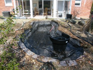 Yard Pond Remodeling and Construction