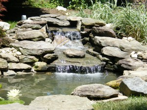 Waterfall Garden Pond
