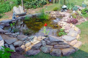 Pond Cleaning and Construction