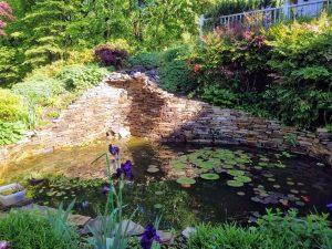 Pond in Ellicott City, MD