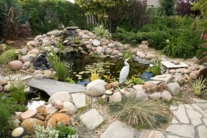 Building decorative yard pond