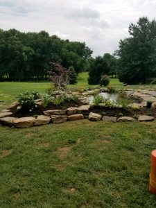 Remodeling existing yard ponds