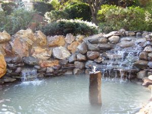pond conversion