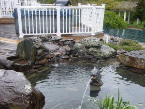 pond next to pool