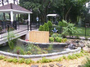 pond with a bridge