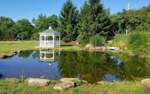Atlantic Ponds - construction and maintenance of ponds and water features in Maryland, Washington, DC, and Northern Virginia