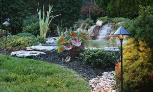 Pond construction companies in Maryland