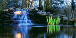 Backlight-Serene-Pond