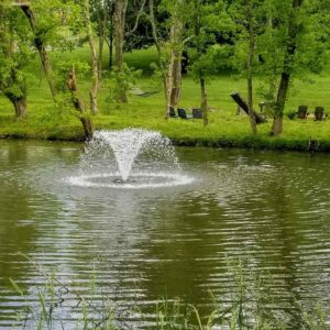 Closer View of Natural Pond Fountain