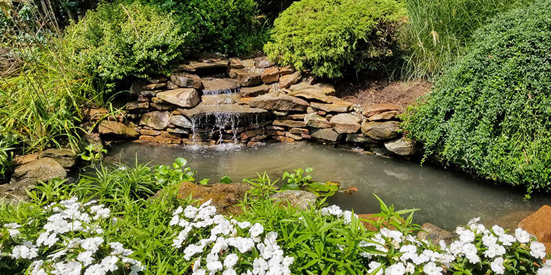 Floral-Garden-Pond-with-Small-Step-Waterfall