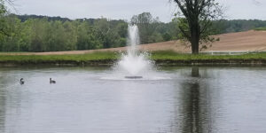 Fountain in Large Pond
