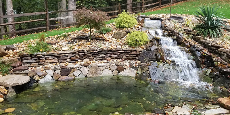 Large-Natural-Ranch-Pond