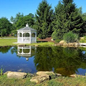 Large-Pond-in-a-Public-Park