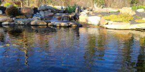 Large-Rock-Swimming-Pond