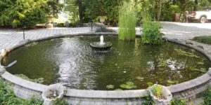 Minimalist-Pond-with-Small-Central-Fountain