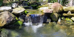Natural-Channel-Falls-into-Small-Pond