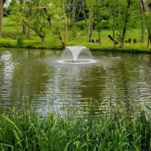 Natural Pond Fountain