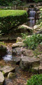 Pondless Stream